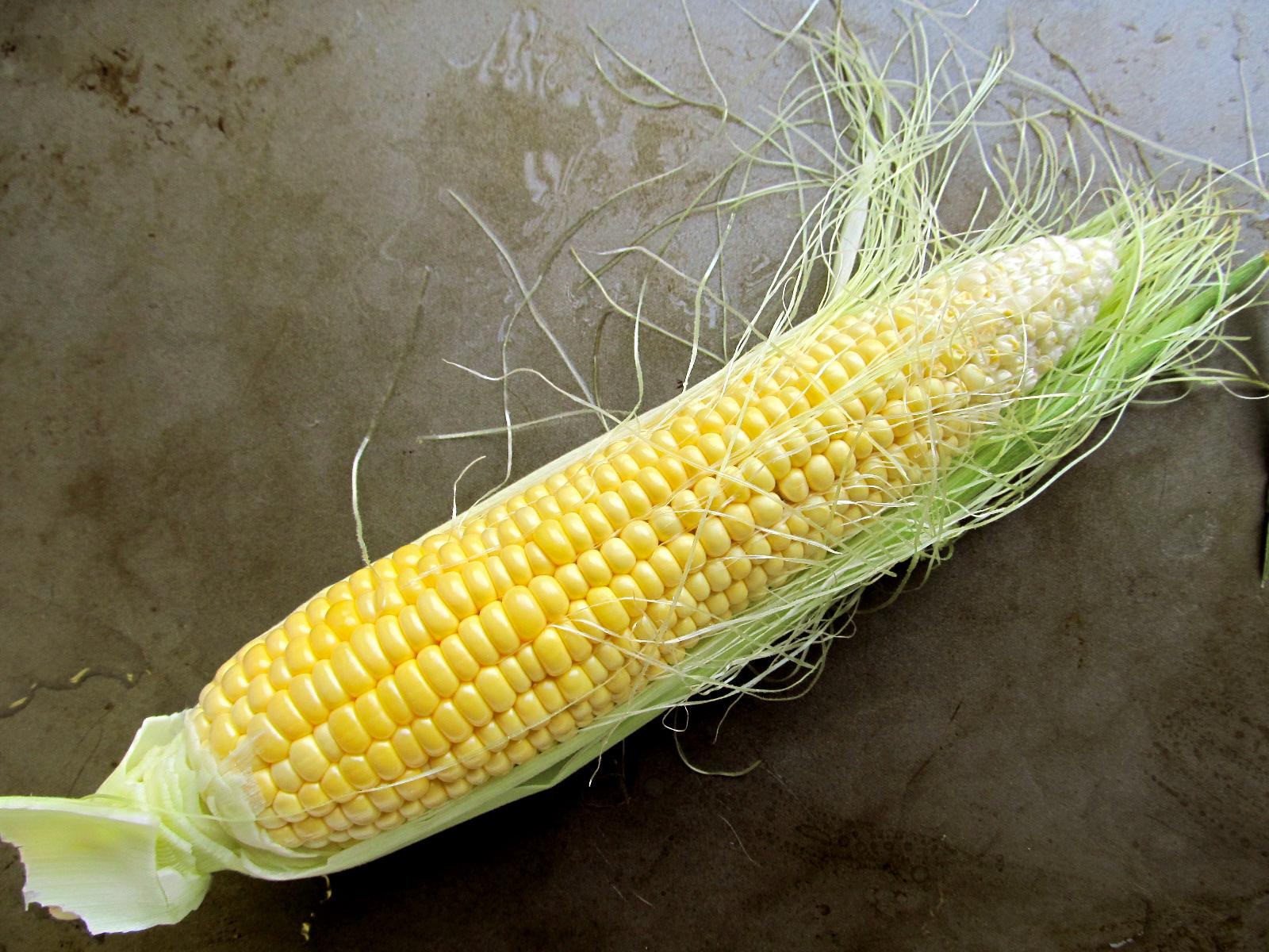 Sweet Corn Wallpaper Here in New York